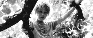 Ein blonder zehnjähriger Junge sitzt in einem Baum. Der Junge heißt Eagle-Eye Bokelmann