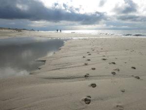 Spuren im Sand, am Strand von Wenningstedt auf Sylt