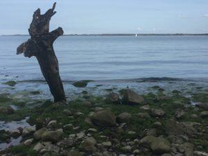 Ein Kreuz am Strand