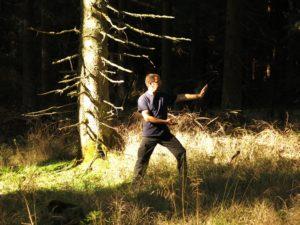 Tai Chi im Wald