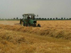Traktor beim Strohwenden auf dem Feld