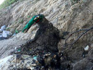 Ein gemaltes Krokodil
