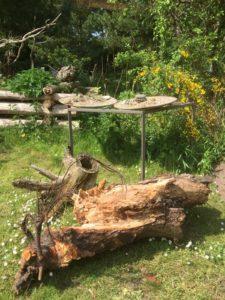 Tisch und Baumwurzel