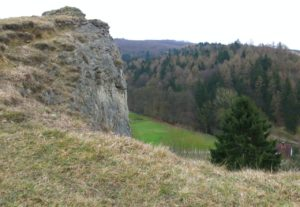 Weide mit Felsen
