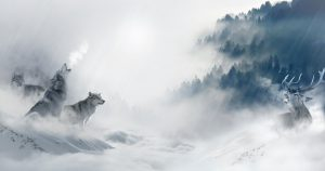 3 Wölfe im Nebel heulen einen Hirsch an