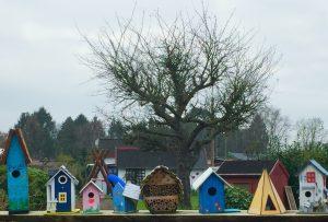 7 Vogelhäuschen in einem Kleingarten